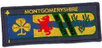 Monty lion1