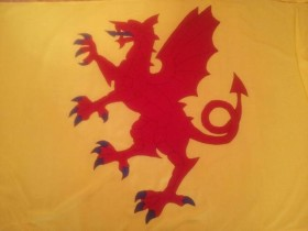 Somerset Flag