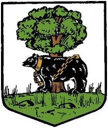 Berwickshire CC Arms