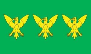 Caernarfonshire Flag